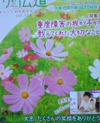 20110122004335.jpg